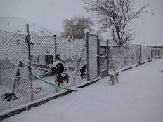 So sieht es im Winter in Burgos aus