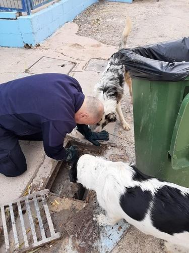 Unsere Kollegen bei Reparaturen vor Ort